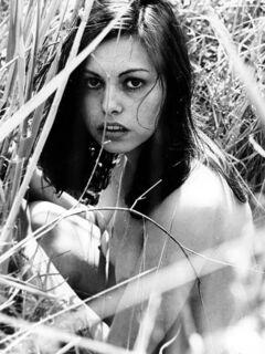 Lina Romay
