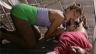 Maximum Perversum 17: Traum-Pussy's (1990)