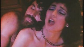 "The Tiffany Minx (1981) ""Tiffany"" american classic"